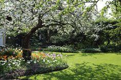 """Alla rabatter är rundade så att gräsmattan får en mer spännande form. Just nu snöar det av äppelblommornas kronblad. """"Den perfekta trädgården för mig personligen känns inbjudande, tillåtande och hemtrevlig. Jag vill att det ska finnas rumsindelning, struktur, klippta häckar och fasta installationer, som plank och pergolor. Att trädgården är rätt belyst är också viktigt när vi bor i ett land där det är mörkt så lång tid på året"""", förklarar hon."""