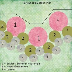 This garden plan uses hydrangeas, hostas, and lamium for a part-shade location.: