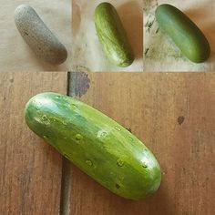 Transformation of a rock to a pickle!