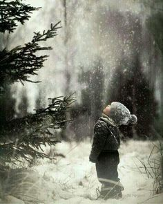 Sweet winter photo Winter Magic by Pernille Nygård on . Winter Szenen, Winter Magic, Winter Christmas, Christmas Trees, Winter Child, Norwegian Christmas, Winter Sunset, Magical Christmas, Winter Family Photos