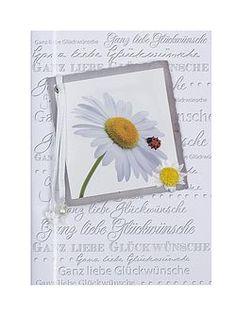 Geburtstagskarte mit Marienkäfer