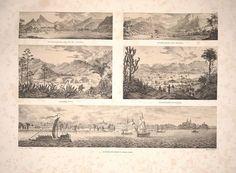 Spix, Johann Baptist von, Reise in Brasilien, (1823-1831)