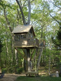 Tree House Backyard Treehouse, Backyard Playground, Treehouse Ideas, Cool Tree Houses, Bird Houses, Tiny House Cabin, My House, Side Yard Landscaping, Tree House Plans
