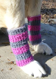 """I'm not a fan of dressing dogs for the heck of it, but I posted this, because these DIY leg-warmers are practical, and they also happen to look cute! You can take your daily walk, without letting your best friend's coat get caked with ice & snow this winter. Posted by Erika of """"Sew Doggy Style"""" on DollarStoreCrafts...."""