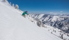 Powder Mountain serving up fresh powder and blue skies this winter!