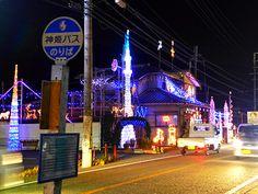 姫路・夢前町に大規模「イエナリエ」-田園地帯へ今年も降臨(写真ニュース)