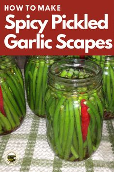 Pickled Garlic Scapes are perfect for appetizers or added to your Bloody Mary or Caesar. Full recipe and instructions to make Pickles. #recipe #pickles #garlic #scapes Preserving Garlic, Preserving Food, Scape Recipe, How To Make Sauce, Pickled Garlic, Pickles Recipe, Garlic Soup, Smoked Fish, Fish And Meat