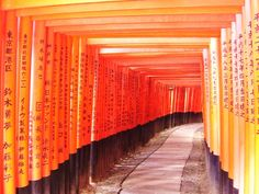 Torii Alley Fushimi Inari Shrine Kyoto (c)MoinServus!