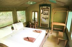 Luxury Tented Camp at Elephant Hills, Khao Sok, Thailand