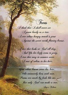 """I think that I shall never see a poem lovely as a tree..."" <3 Joyce Kilmer"
