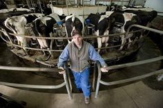 With milk prices dropping because of increased production nationwide — particularly west of the Mississippi — Vermont dairy farmers once again are worried about staying in business, just three years after declining milk prices and increasing costs in 2009 threatened the survival of many Vermont farms.