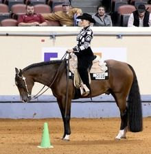 Two-time World Champion Whitney Vicars Shares Horsemanship Tips, this is such a good article to read! Horsemanship Patterns, Western Horsemanship, Horses And Dogs, Show Horses, American Quarter Horse, Quarter Horses, Horse Hay, Western Pleasure Horses, Horse Show Clothes