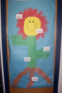 Kindergarten Science Lesson: Parts of a Flower
