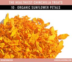 The Healthiest Chinchilla Treats - 10 - Organic Sunflower Petals