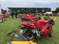 Ducati 916, Ducati Motorcycles, Antique Cars, Sport Bikes, Custom Bikes, Vehicles, Vintage Cars, Sportbikes, Sport Motorcycles