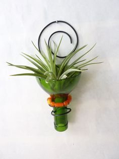 Recycled bottle sconce Air plant holder Green and by glassetc