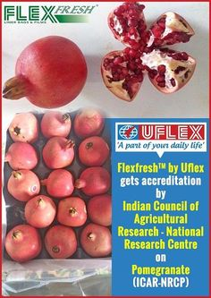 Flexfresh™ Liner Bag by Uflex gets Accreditation for Pomegranates Research Centre, Pomegranates, Packaging, Vegetables, Bag, Elm Tree, Purse, Veggies, Pomegranate