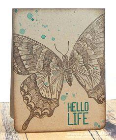 DTGD15DiniB Hello Life