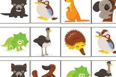 Australian animal memory game animals silly animals animal mashups animal printables majestic animals animals and pets funny hilarious animal Australia Crafts, Australia Map, Zoo Activities, Travel Activities, Animals And Pets, Funny Animals, Australian Party, Aus Day, Toddler Themes