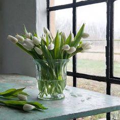 Feliz tarde!  #tulipanes #tulips #jarron #jarrones #florero #floreros #eventplanning #weddinplanner #estilonordico #estilonordicoshowroom #affari #flowers #flowerpots