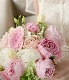 pivoines roses poudrées