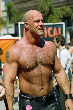 List of male performers in gay porn films - Wikipedia, the free encyclopedia