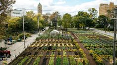 The Michigan Urban Farming Initiative announced plans to renovate a vacant three-story building into a community center as the centerpiece of a mixed-use urban development.