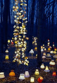 This looks like something the English author Charles Lutwidge Dodgson and producer Tim Burton thought up. It Looks like a walk in the forest of Alice in Wonderland.