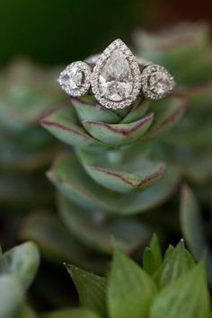 gorgeous pear cut three stone diamond engagement rings