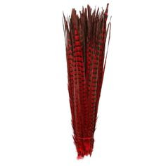 50Pcs 50-55CM 20-22 Inch Natural Pheasant Tail Feathers DIY jewelry Carnival clothing Wedding Decorations Pheasant Feather plume