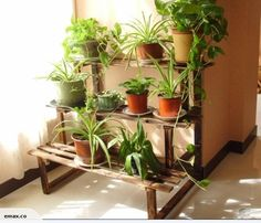 Flower Stand! Wooden Steps Plant Stand