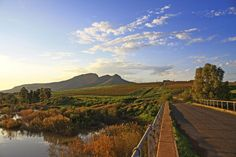 Piketberg area western cape - Google Search I Am An African, St Helena, Afrikaans, West Coast, Places Ive Been, South Africa, Landscapes, Southern, Mountains