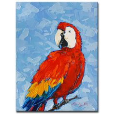 """Ready2hangart 'Scarlet Macaw' by Sarah LaPierre Painting Print on Wrapped Canvas Size: 16"""" H x 12"""" W x 1.5"""" D"""