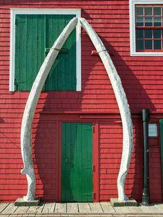 Massive, stunning whale bones at the Fisheries Museum in Lunenburg, Nova Scotia Canada! O Canada, Canada Travel, Lunenburg Nova Scotia, East Coast Canada, Nova Scotia Travel, East Coast Road Trip, Atlantic Canada, Chula, Prince Edward Island