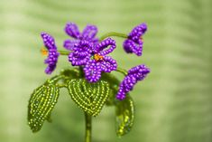 Beaded Flower PATTERN Violet
