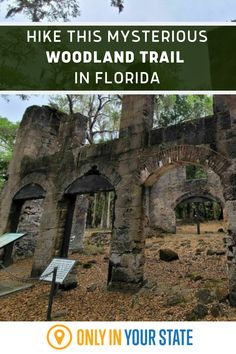 Bulow Woods Trail in FLorida will take you to Charred Sugar Mill, transporting guests back in time, through the sordid and mysterious history of the Bulow family. This isn't a short trek, but new or experienced hikers will feel at ease on the path to uncover some nature and history!