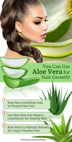 Do you the amazing benefit of aloe vera for hair?Aloe vera gel acts beautifully on hair. In this article you will know how to use aloe vera for hair growth. Aloe Vera Face Mask, Aloe Vera For Hair, Aloe Vera Gel, Hair Remedies For Growth, Hair Loss Remedies, Alovera For Hair Growth, Biotin Hair Growth, Diy Hair Care, Hair Care Tips