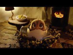 Die Oster-Überraschung – #DerWahreOsterhase - YouTube