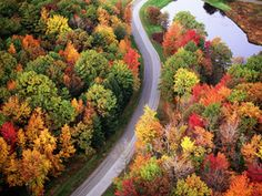 This winding 2-way road cuts through a carpet of colors just outside of Hampton, NH. Eager leaf-peepers should head here!
