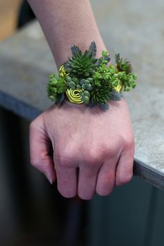 Floral bracelet with succulents, mini crassula and acacia on aluminum wire, by Floral Verde LLC in Cincinnati, OH.