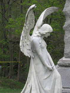 I believe that there are Angels everywhere in human form and other forms. They are here to guide and protect. Hallelujah