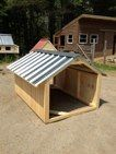 Goat Farming: Getting Back to Basics - Tools And Tricks Club Pig Shelter, Animal Shelter, Chicken Shelter, Pot Belly Pigs, Pig Pen, Mini Pigs, Pet Pigs, Mini Farm, Goat Farming