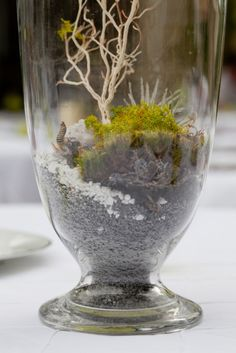 Dirt. grass. moss. vases. Photography by www.stellaalesi.com  Read more - http://www.stylemepretty.com/2013/09/11/wildflower-center-wedding-from-joyful-details-stella-alesi-photography/