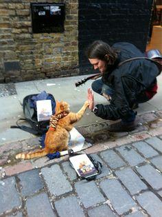 """""""In covent garden and I just met the most amazing cat"""". Cose che capitano camminando per Londra... """"A spasso con Bob"""""""