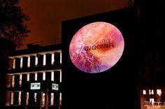 #GinaCzarnecki's I at #LumiereDurham. http://forma.org.uk/programme/exhibitions/gina-czarnecki-i