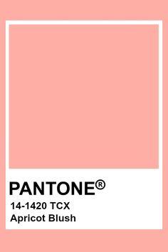 Pantone Apricot Blush