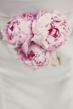 love these.. my mom bought some and I fell in love. they just look so vintagy and romantic. perfect wedding flower <3