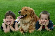Aumento de la responsabilidad, autoconfianza y bienestar. Descubre estos y otros beneficios de criar a tus hijos con un perro como mascota.