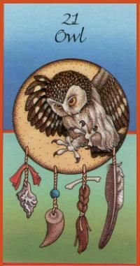 Owl... Magic, Omens, Time and space. Does the truth emerge? Casting out deception, Silent flight, Sacred Medicine Bird. (DECEPTION)