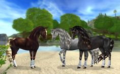 "Képtalálat a következőre: ""star stable lovak"" Star Stable Horses, Horse Star, Star Stable Online, Very Fun Games, Horse Games, Wings Of Fire, Hobby Horse, Black Horses, Friesian Horse"